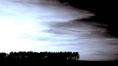 Wald/himmel