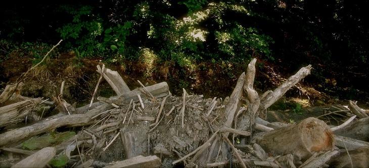 Weathered Debris 5