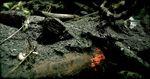 Weathered Debris 6