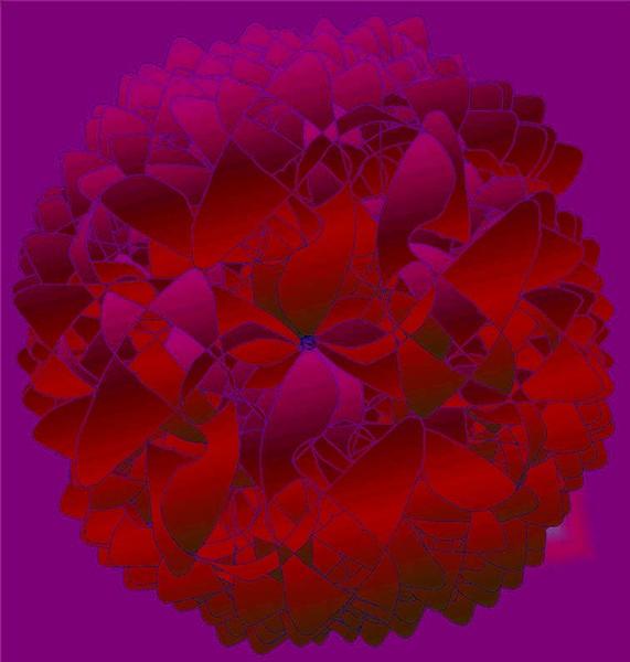 Clove - Nellik