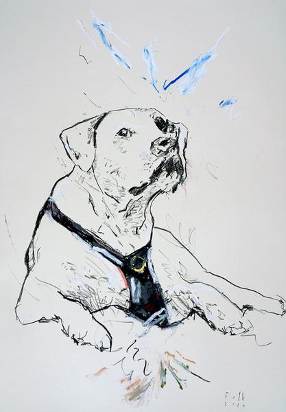 Hund von der Kölner Domplatte