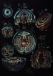 Cell Vortex