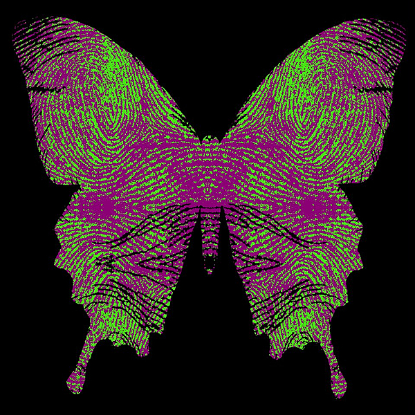 Butter fly print