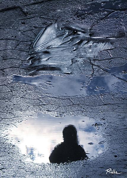 After the rain - artwork by Ridha H. Ridha