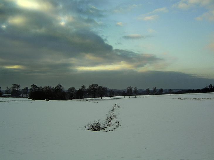Winter Heide