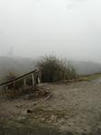 Treppenanfang Drachenberg