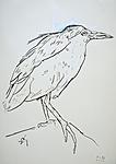 Septembervogel I