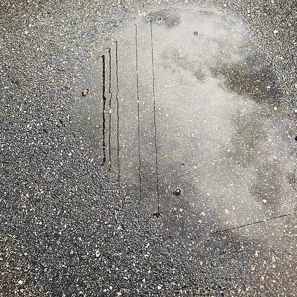 "MacLeod - ""Power Lines in Puddle"""