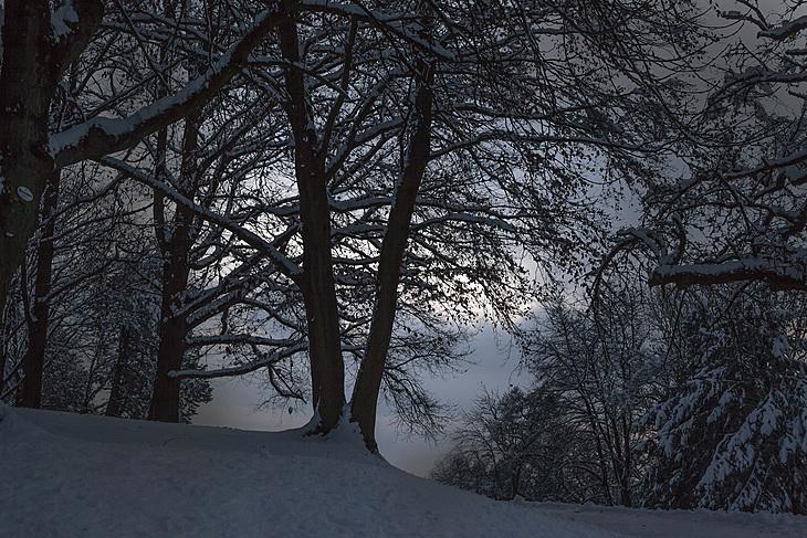 Freienberg Linz 2 _Lunge