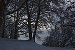 Freienberg Linz 6