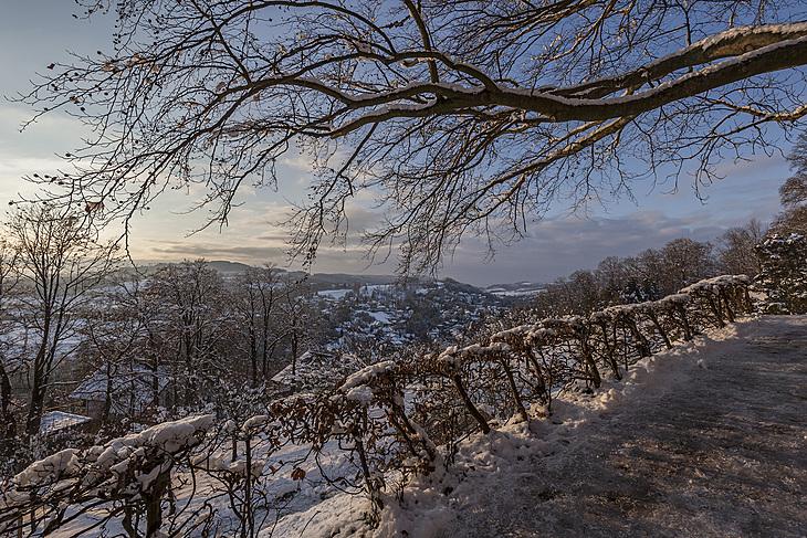 Freienberg-2/_MG_4369_1
