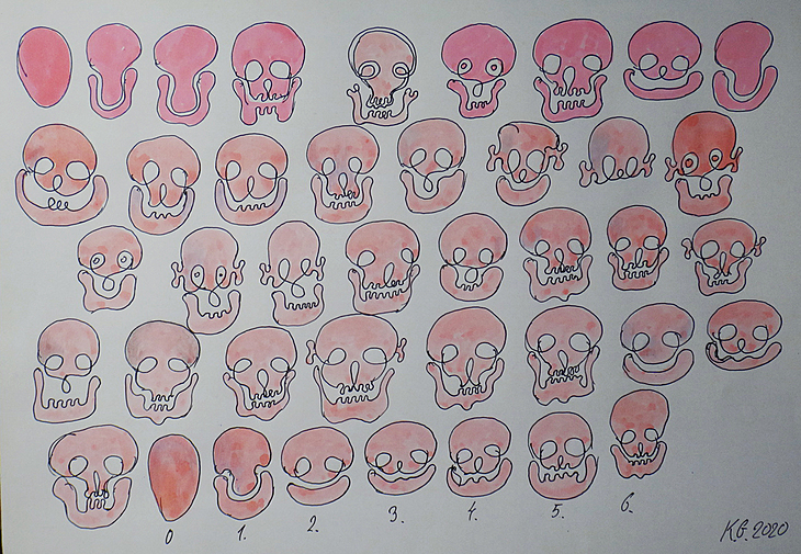 Human skul pattern