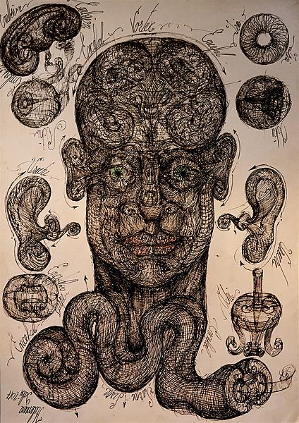 Vortex brain