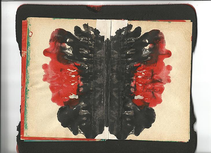 Ze Ve Rorschach book2