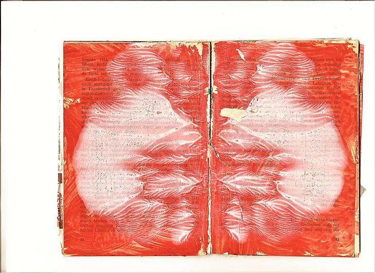 Ze Ve Rorschach book4
