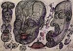 Head anatomy vortex