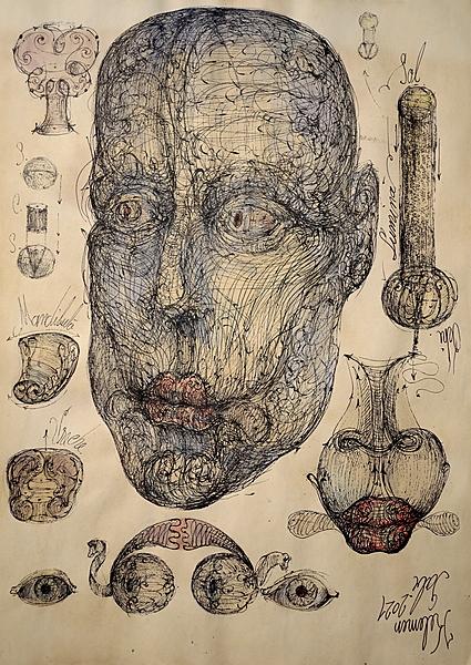 Human face vortex