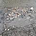 Steinplatz_Tom_9Jahre