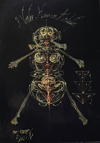 Human 3 archetype