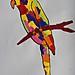 Papagei Paul_Anna_9 Jahre