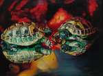 turtle discotheque