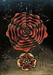 Rosa vortex geometry