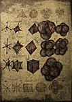 Polyhedron octave