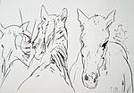 Mit Pferden