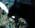 meine Katzenmeinung  vor Gemálde