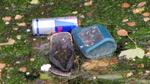 IMG_2339 - Nature & Trash - The Trio Met At Muddy Waters