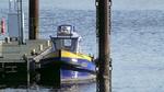 IMG_2620 - Fish & Ships - Adolf