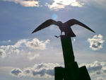 IMG_5128 - Up In The Skies - Monumens - Seagull Monument