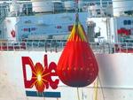 IMG_5263 - Fish & Ships - Dole Asia - The Balance Of Power