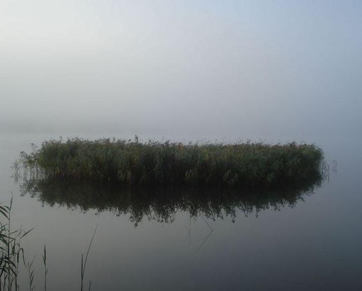 isle of reed