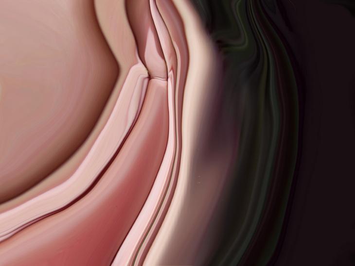 inner skins 2