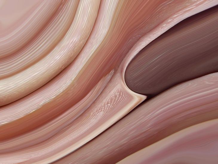 inner skins 1