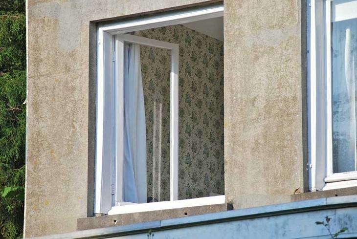 window-s