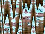 body pattern 6