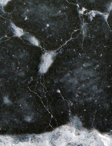L1090519 Detail 3