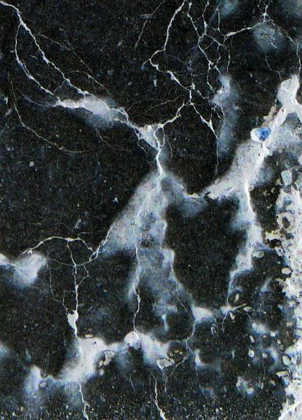 L1090519 Detail 2
