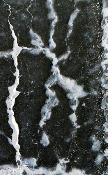 L1090519 Detail 1