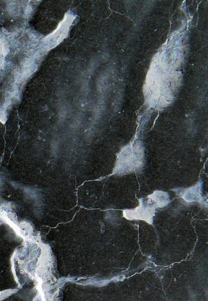 L1090516 Detail 3