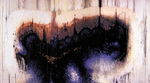 The Decaying one (Triptych)