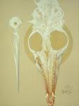 A White Bone