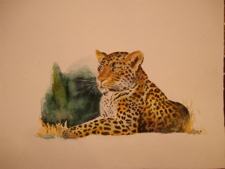 leopard (copy)