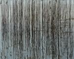seismograph 1/2