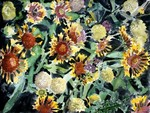 Indian-blanket-flowers-painting