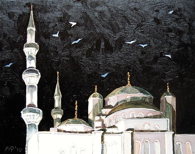 Seagulls over the Blue Mosque.