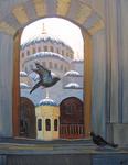 Pigeons at Eminenu Mosque.