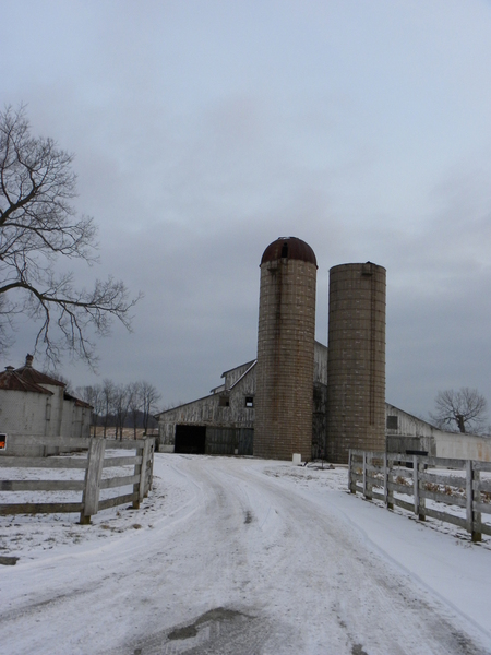 Winter At Oxmoor Farm